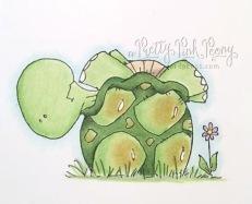 2017.05.31_turtle