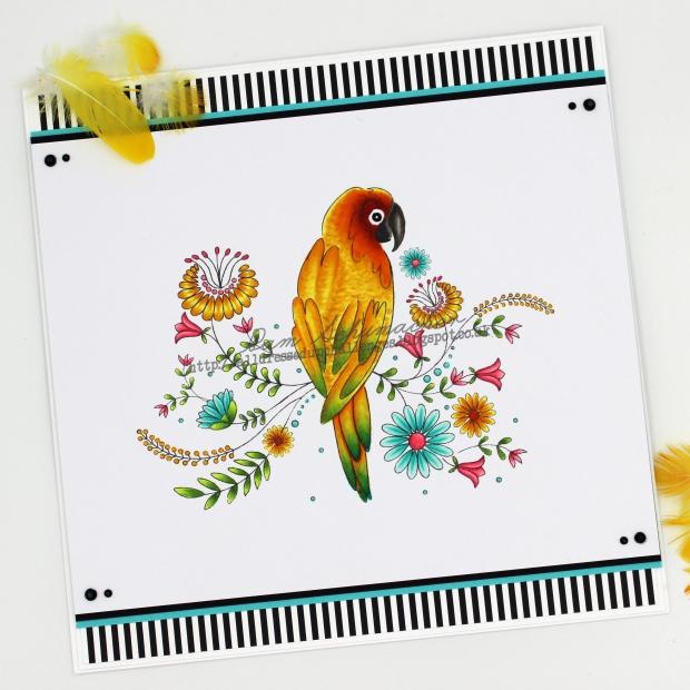 Summer Bird1